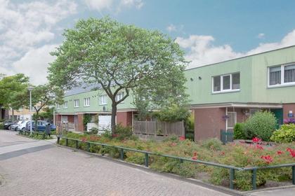 Dwergvinvisstraat 21 in Amsterdam 1035 HM