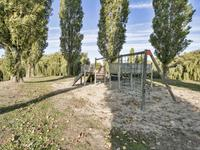 Maldenhof 3 in Tilburg 5045 KM