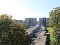 Klepel 137 in Emmen 7811 KT