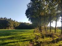 Kerkendelweg in Kootwijk 3775 KM