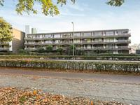 Hogeweg 15 D in Amersfoort 3814 CB