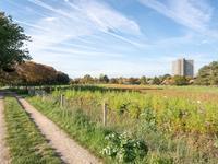 Diedenweg 64 in Wageningen 6706 CR