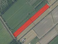Langbroekerdijk in Driebergen-Rijsenburg 3972 NB