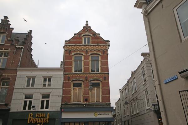 Krullartstraat 2 in 'S-Hertogenbosch 5211 HR