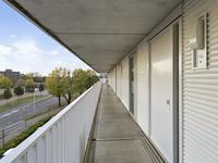 Vijfhagen 16 in Breda 4812 XT