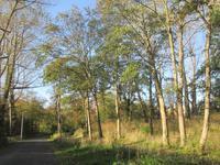 Vijverpark 28 in Overveen 2051 GP