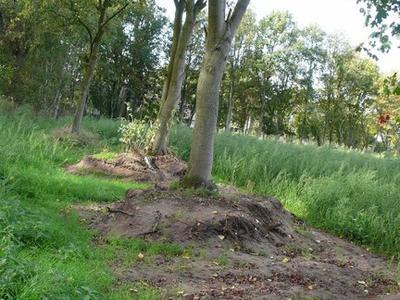 Bekeringweg 14 (Nabij) in Winterswijk Kotten 7107 AM