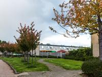 Altvioolstraat 27 in Almere 1312 JL