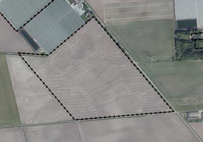 Kievit Projectlocatie Glastuinbouw in Grashoek 5985 NG