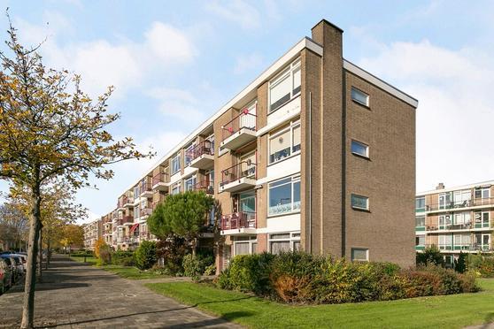Ellemare 17 in Rotterdam 3085 JN