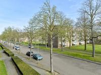 Lienaertsstraat 130 in Geleen 6164 GK