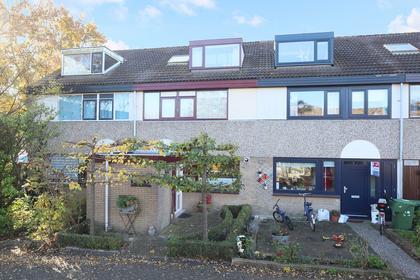 Petuniadal 5 in Leiden 2317 HZ