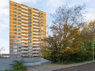 Nachtwachtlaan 464 in Amsterdam 1058 ER