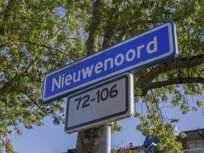 Nieuwenoord 74 in Rotterdam 3079 LM