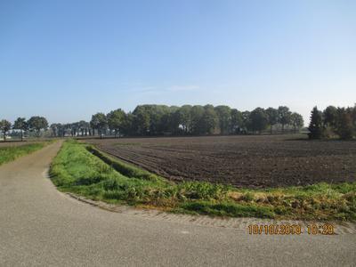 Klein Zundertseweg Perceel Cultuurgrond in Sprundel 4714 RR