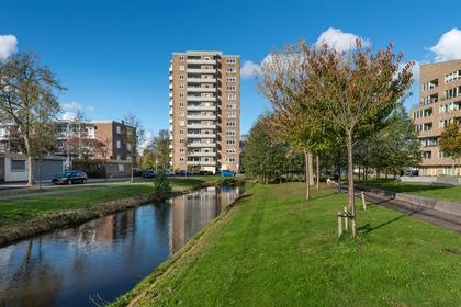 P.C. Boutensstraat 217 in Haarlem 2025 LE