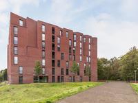 Wijnruitstraat 307 in Hoogvliet Rotterdam 3193 GN