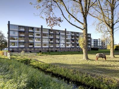 Borgweg 15 in Farmsum 9936 EH