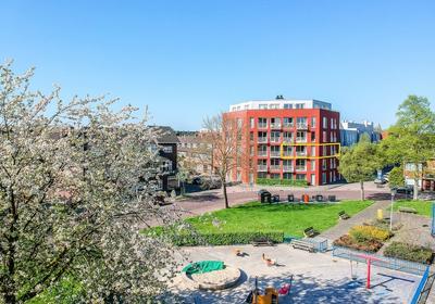 Van Koetsveldstraat 114 in Utrecht 3532 ET