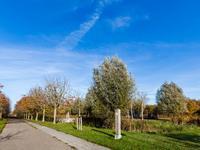 Boeierstraat 16 in Almere 1335 SP