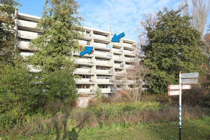 Stadzicht 109 in Leiden 2317 RW