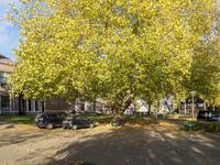 Burgemeester Falkenaweg 58 in Heerenveen 8442 LE
