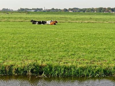 Overweg 47 in Ouderkerk Aan De Amstel 1191 PT