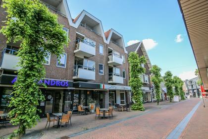 Brinklaan 120 in Apeldoorn 7311 JE