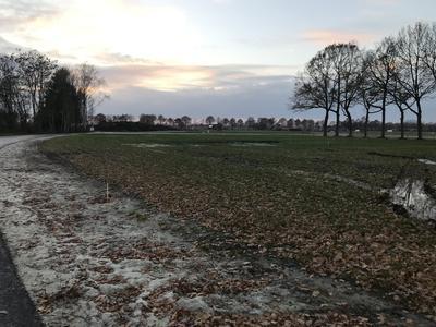 Dagpauwoog in Nieuwleusen 7711 ZE