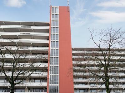 De Koppele 175 in Eindhoven 5632 LH
