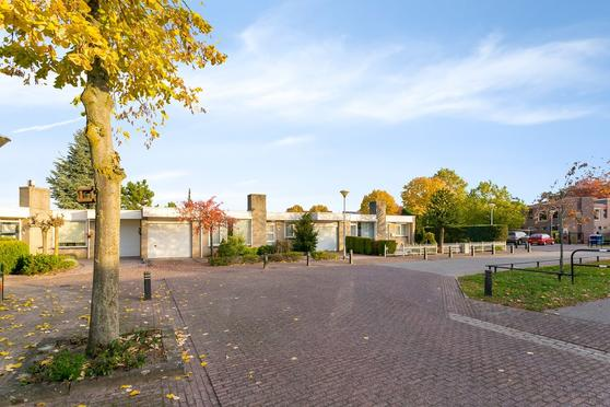 Zilverpopulier 20 in 'S-Hertogenbosch 5237 HX