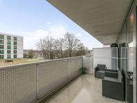 Vijfhagen 172 in Breda 4812 XT