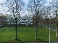 Grimbeertstraat 3 C in Maastricht 6217 BA