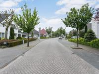 Witbolgrasbeemd 53 in Valkenswaard 5551 HX