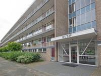 Schalkeroord 167 in Rotterdam 3079 WD
