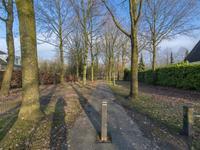 Grevelingen 71 in Tilburg 5032 TD
