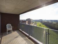 Villa Waterranonkel 424 in Waalwijk 5146 AS