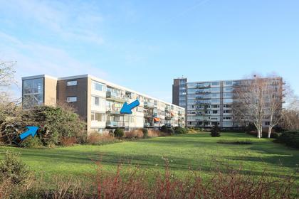 Apollolaan 536 in Leiden 2324 CH