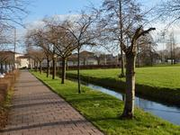 Iepenpad 8 in Schoonhoven 2871 RE