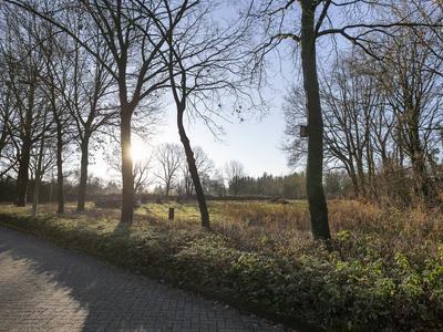 Schuttekamp 119 in Enschede 7524 BK