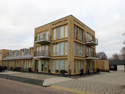 Bellehof 11 in De Rijp 1483 TR