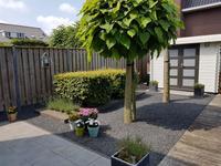 Vreeswijkstraat 19 in Tilburg 5036 VA
