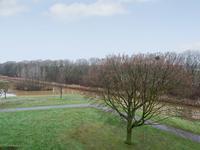 Kruiskampsingel 169 in 'S-Hertogenbosch 5224 KG