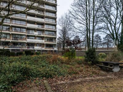 Seringenplantsoen 245 in Ridderkerk 2982 BL
