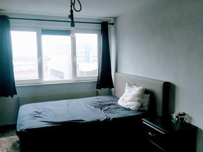 Cor Kieboomplein in Rotterdam 3077 MK
