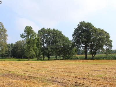 Lambrekven in Heeze 5591 TN