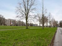 S. F. Van Ossstraat 246 in Amsterdam 1068 JP