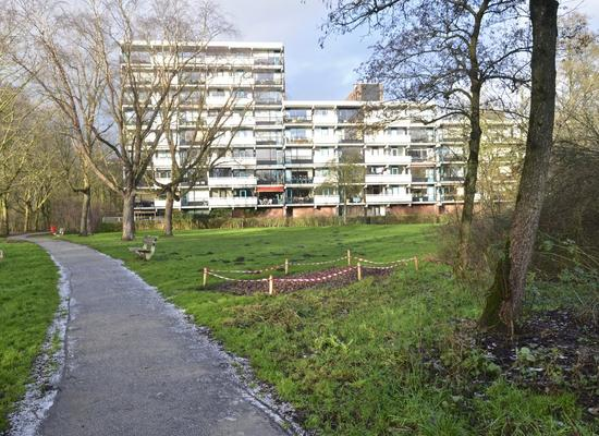 Top Naefflaan 95 in Groningen 9721 VG