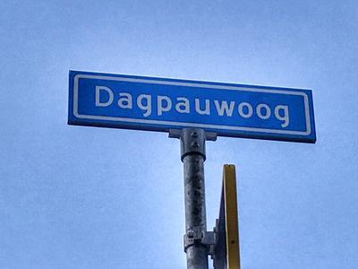 Dagpauwoog 44 in Nieuwleusen 7711 ZE