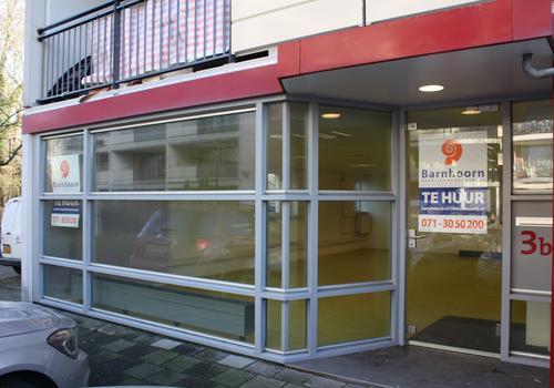 Pelmolen 3 B in Leiden 2317 PN